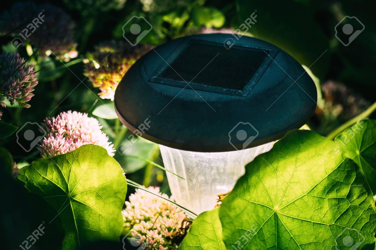 Decorative Small Solar Garden Light, Lanterns In Flower Bed... Stock ...