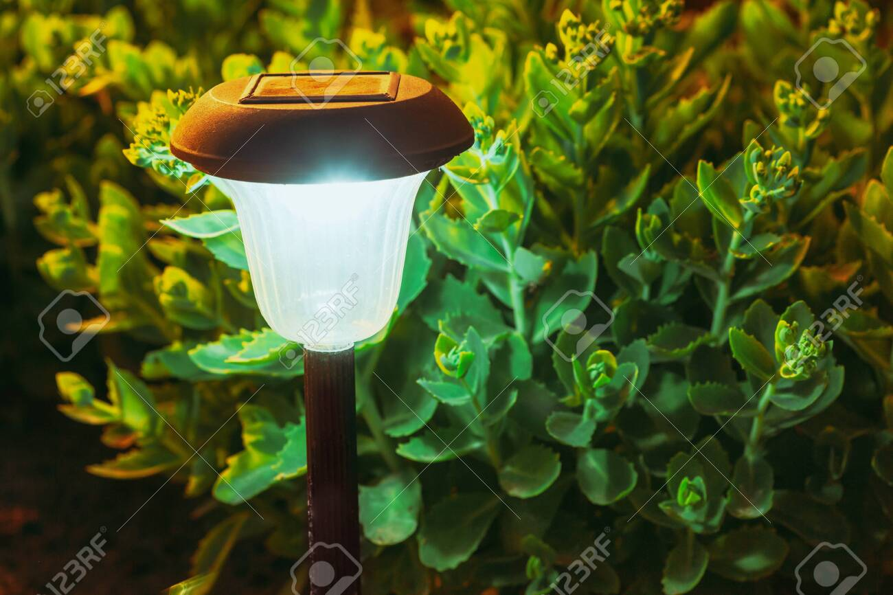 Decorative Small Solar Garden Light Lantern In Flower Bed Garden Stock Photo Picture And Royalty Free Image Image 156411459