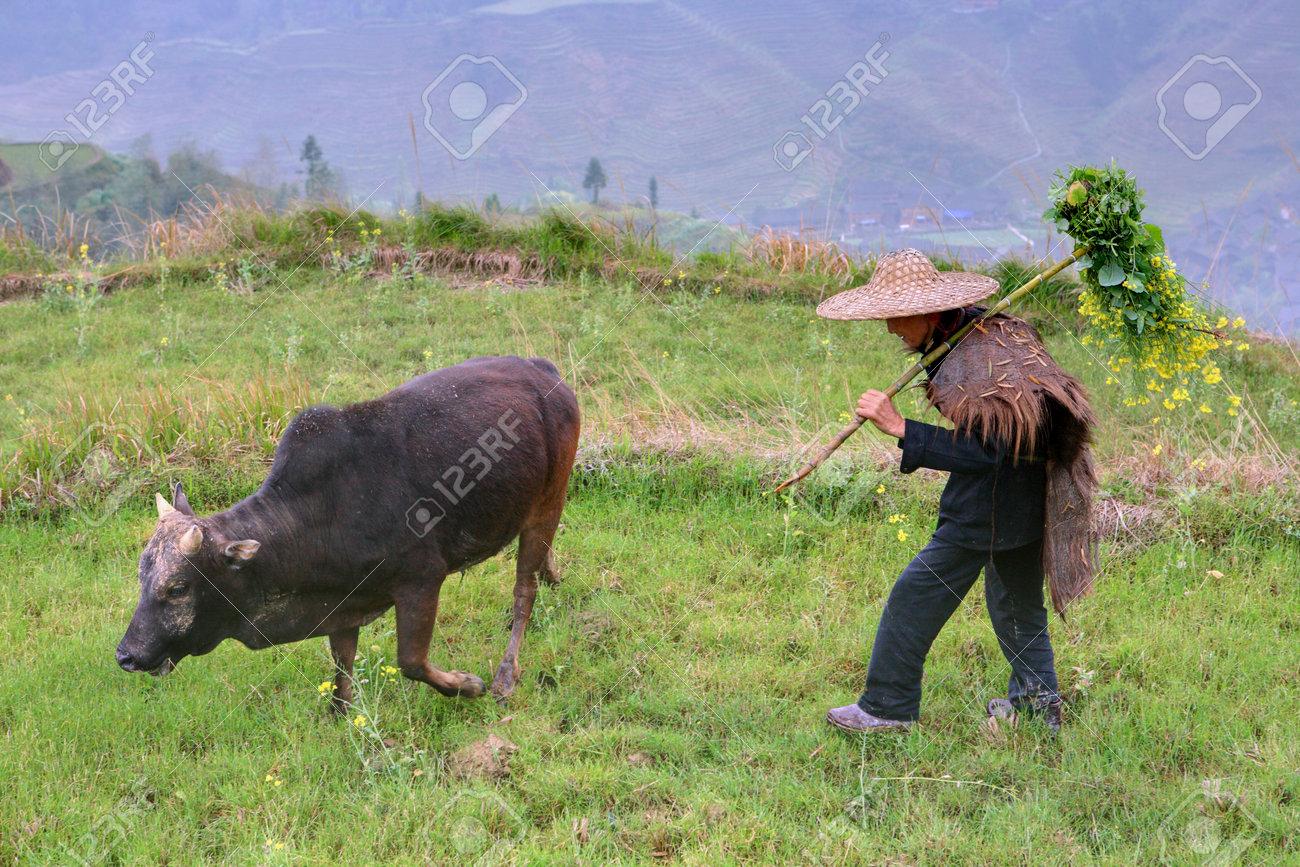 Yao Village Dazhai, Longsheng, Guangxi Province, China - April 3, 2010: Chinese peasant shepherd wearing cloak an animal skin, rural China.  Stock Photo - 25386133
