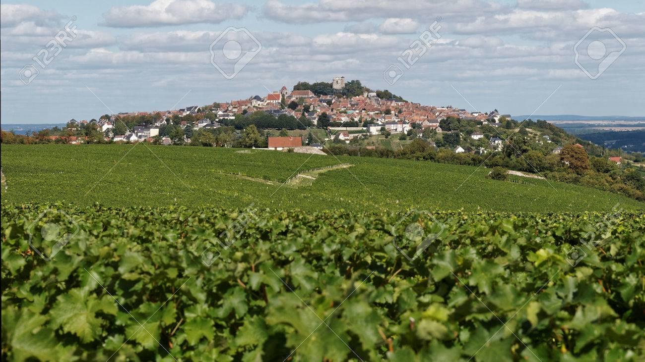 Los Viñedos Del Valle Del Loira Fotos Retratos Imágenes Y Fotografía De Archivo Libres De Derecho Image 45645767