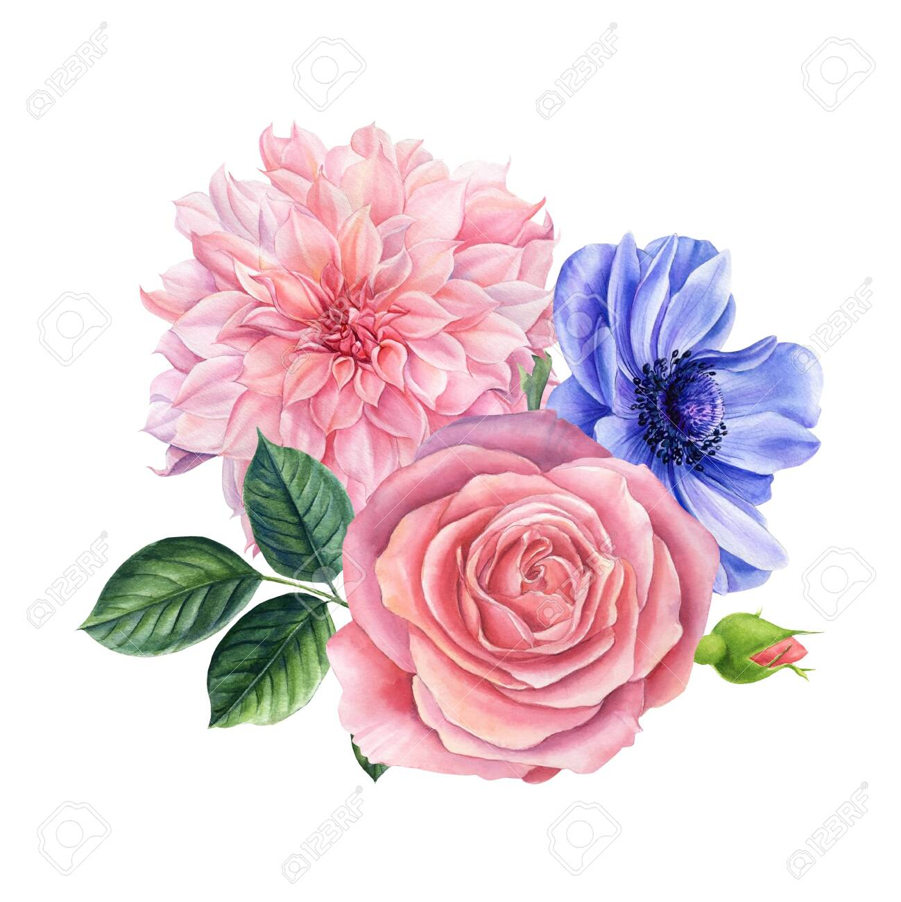 Watercolor Delicate Flowers Blue Anemones Roses Dahlias Bouquet Stock Photo Picture And Royalty Free Image Image 152020143