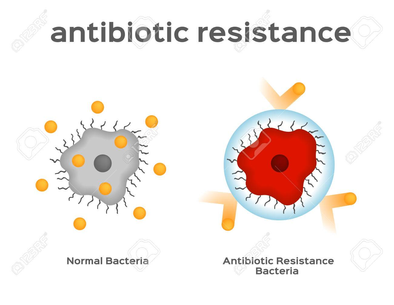Image result for image of antibiotic resistant viruses and bacteria