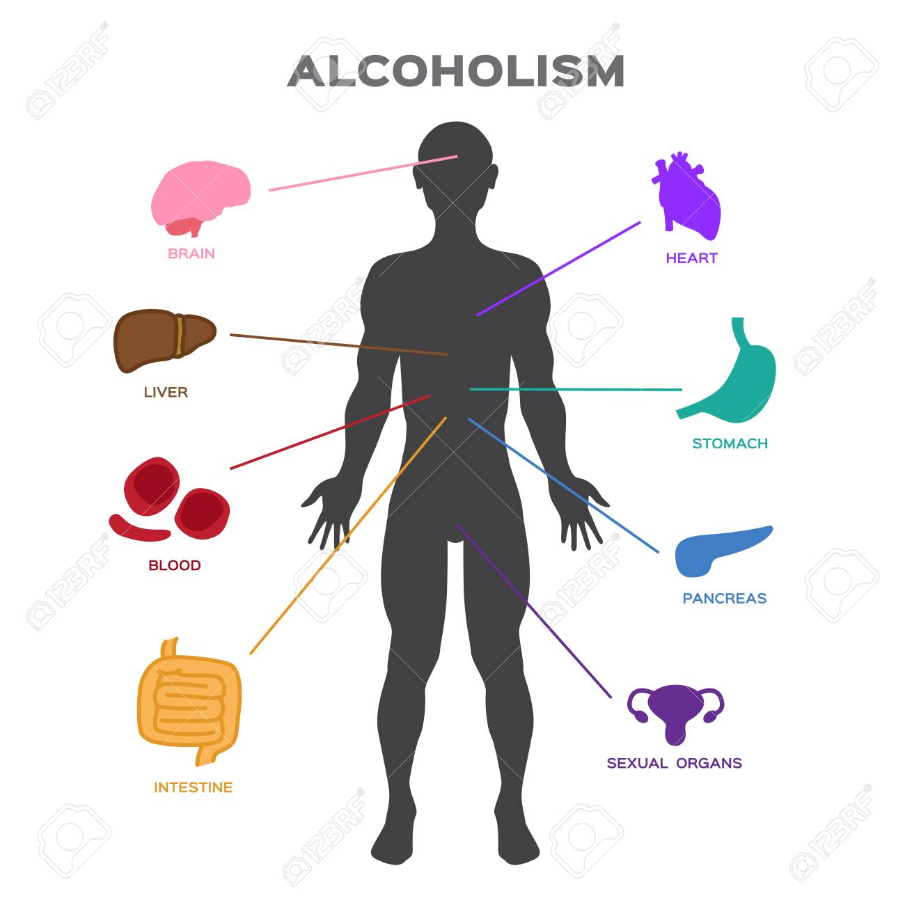 Alcoholism effect to human body anatomy vector royalty free alcoholism effect to human body anatomy vector stock vector 94310079 ccuart Image collections