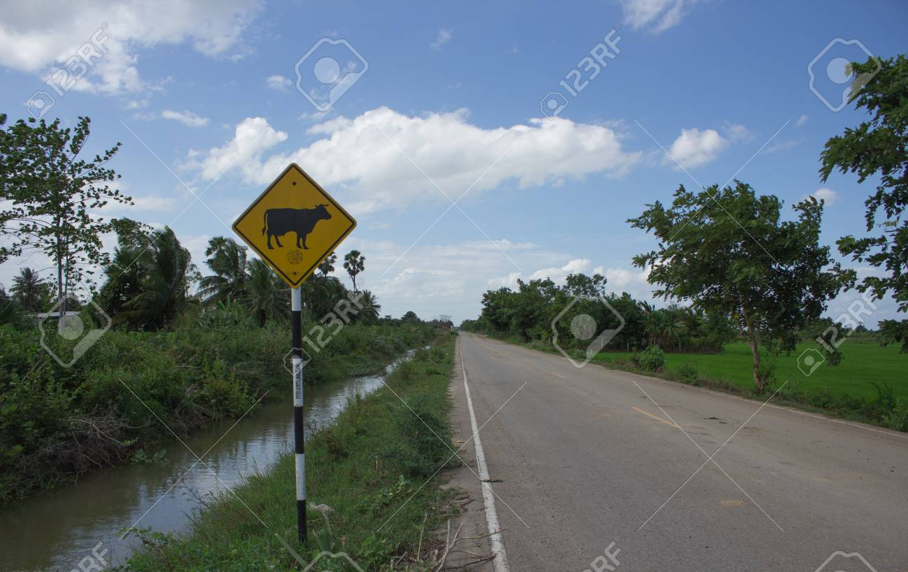 Traffic Sign at Countryside Road Stock Photo - 15252090