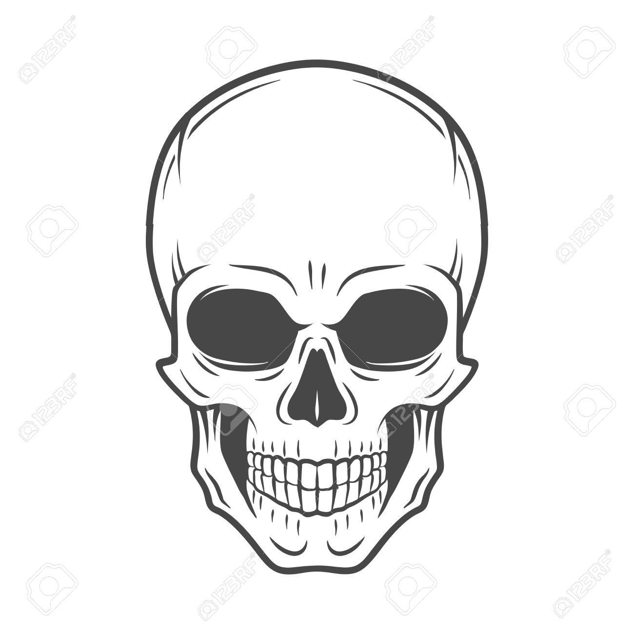 human evil skull vector jolly roger logo template death t shirt rh 123rf com skull vector image skull vector image