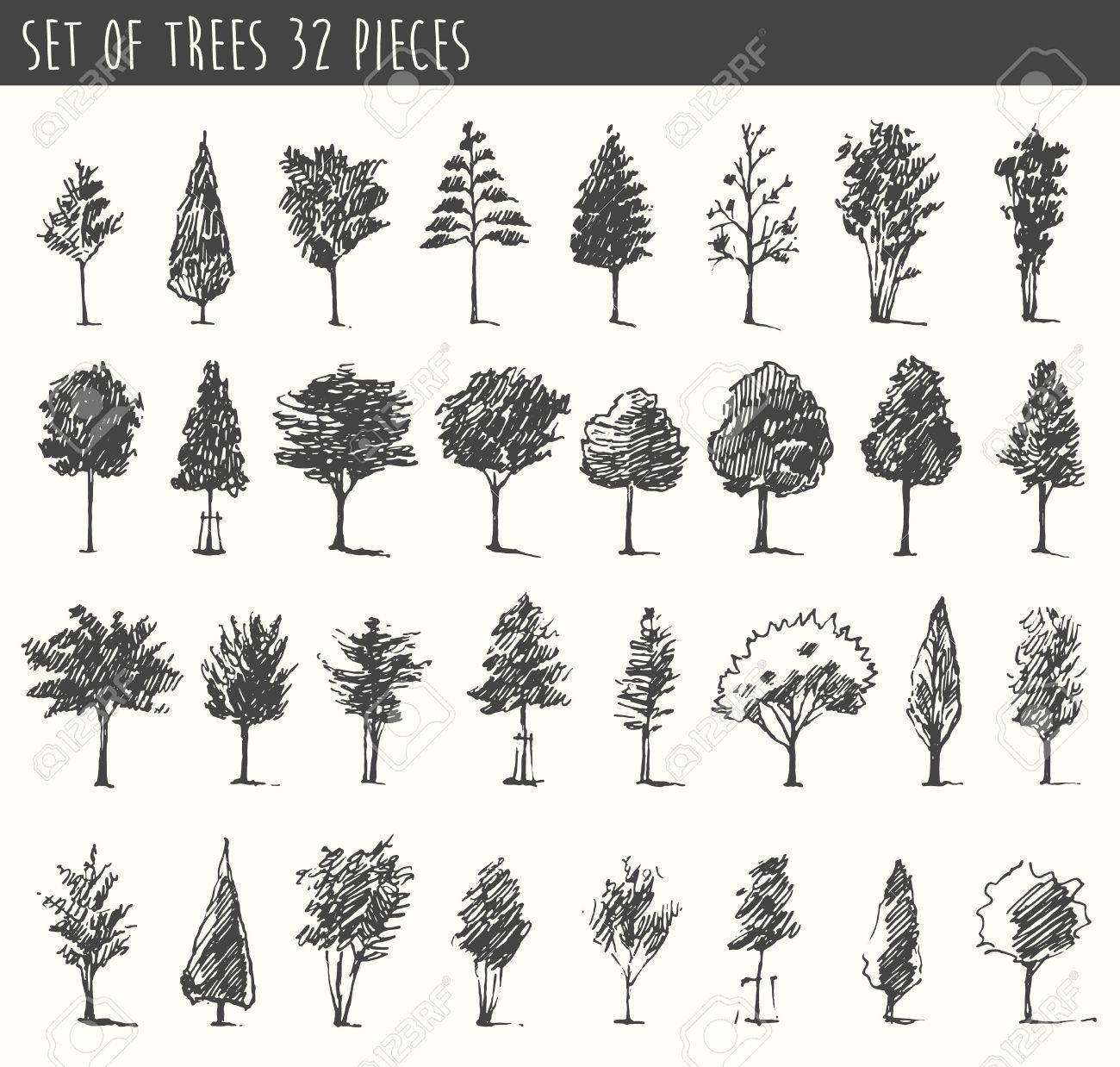 Trees sketch set vintage vector illustration engraved style trees sketch set vintage vector illustration engraved style hand drawn stock vector altavistaventures Gallery