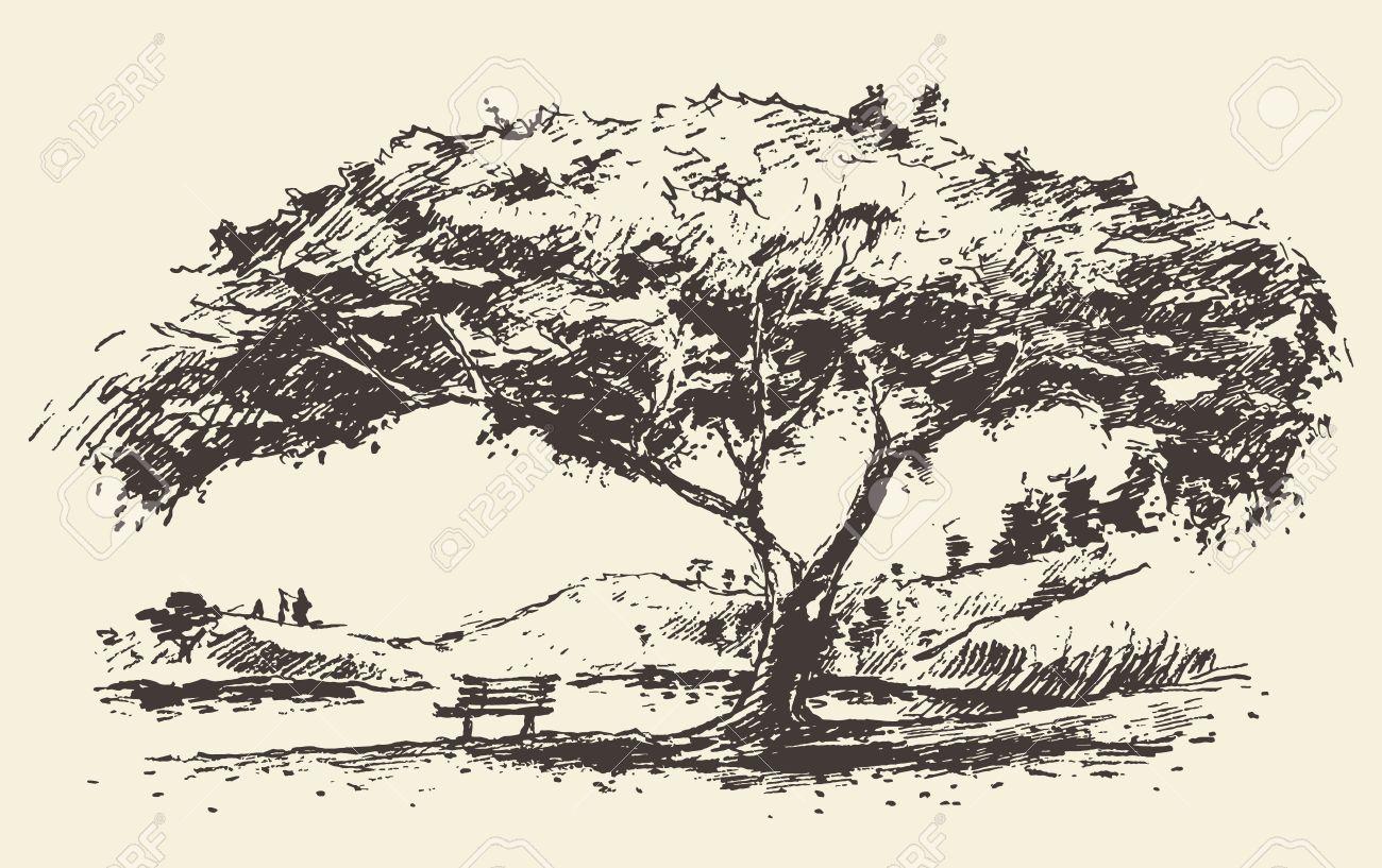 schöne romantische abbildung baum mit bank hand gezeichnete skizze