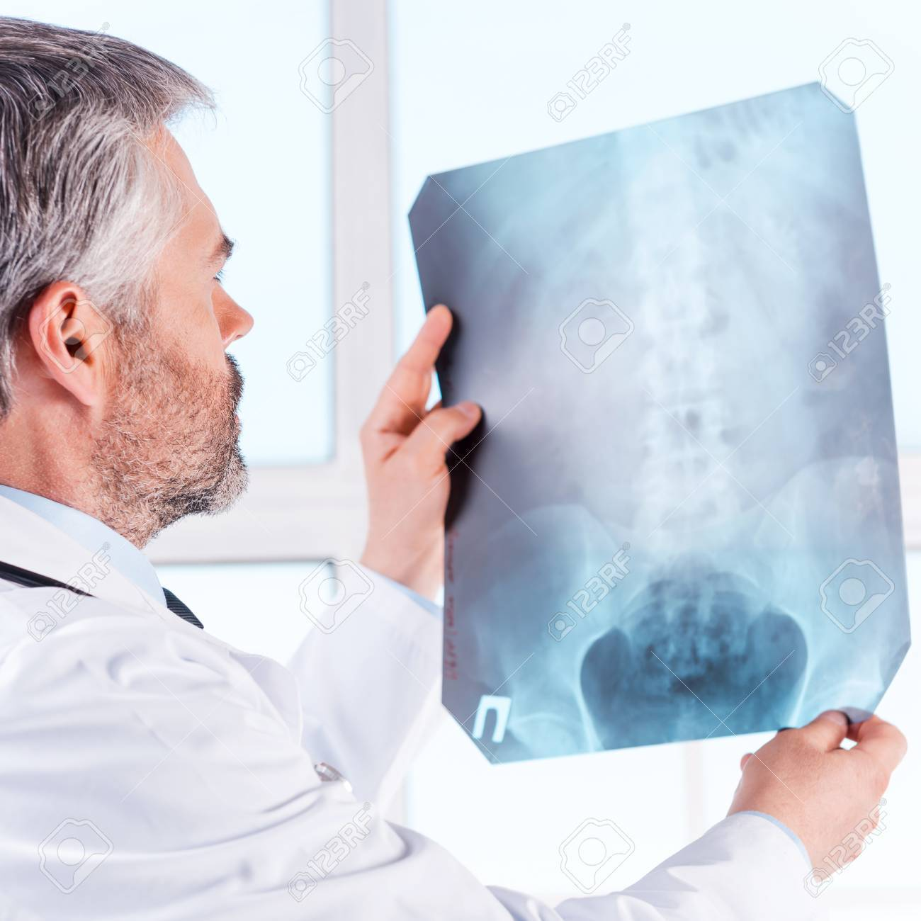examining x-ray. rear view of confident mature grey hair doctor