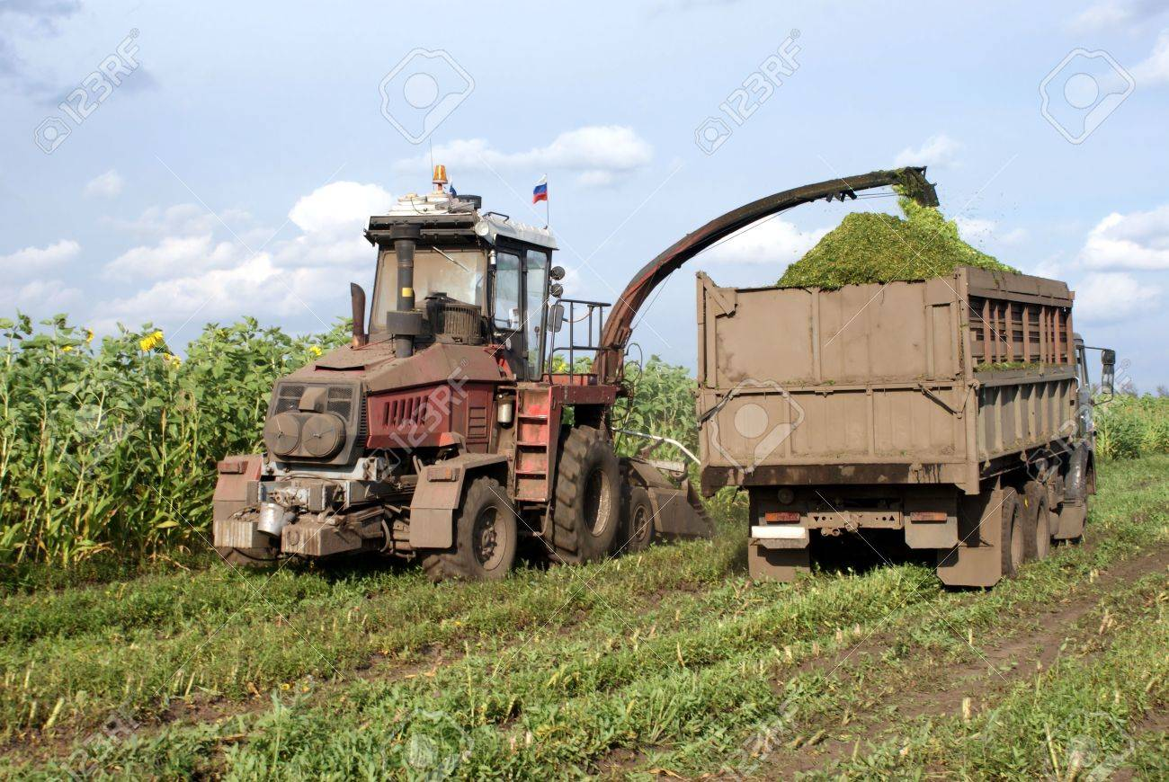 Cleaning in the fields of forage crops agricultural machinery Stock Photo - 5544623