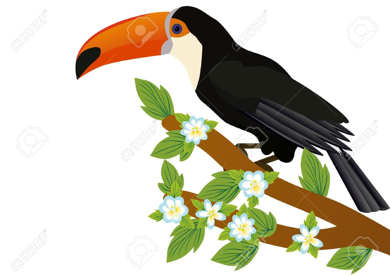 Exotic birds. Toucan sitting on a tree branch Stock Vector - 9345159
