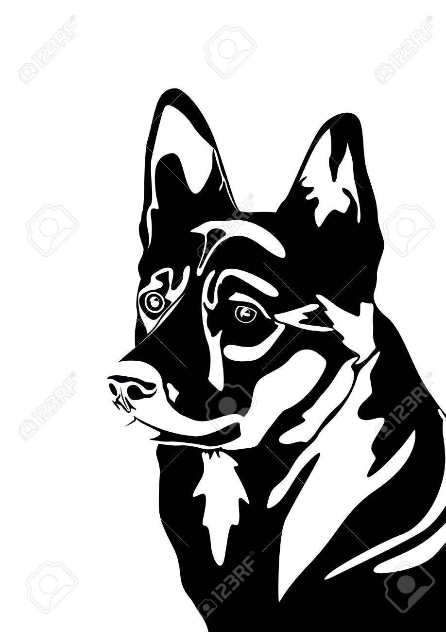 The head of a dog  Black and white illustration Stock Vector - 12800753