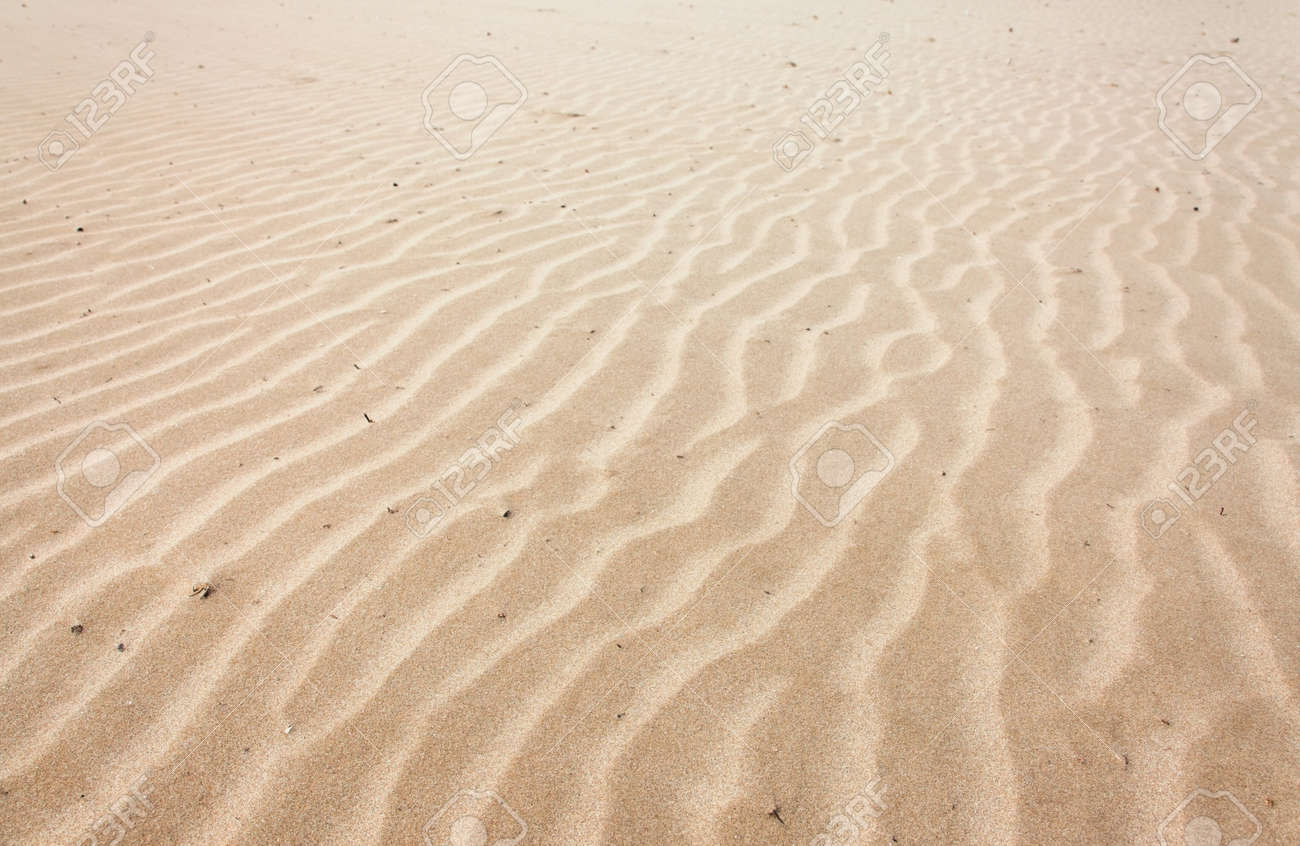 Lines in the sand of a beach Stock Photo - 9526215