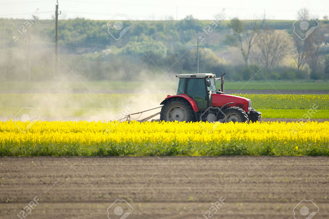 Tractor on the fields Stock Photo - 19533763
