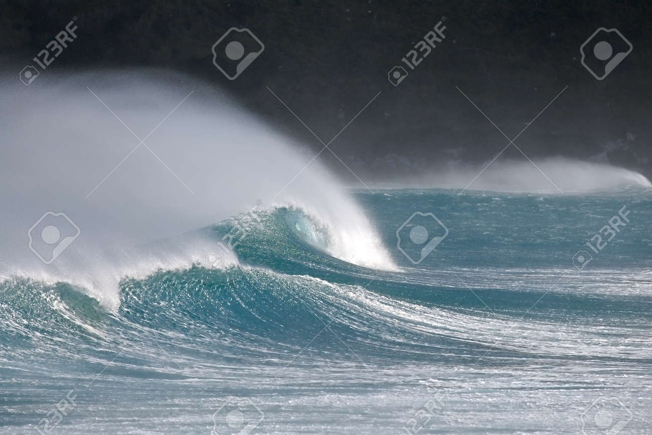 Extremely strong waves in the wind, stormy gust - 146579930