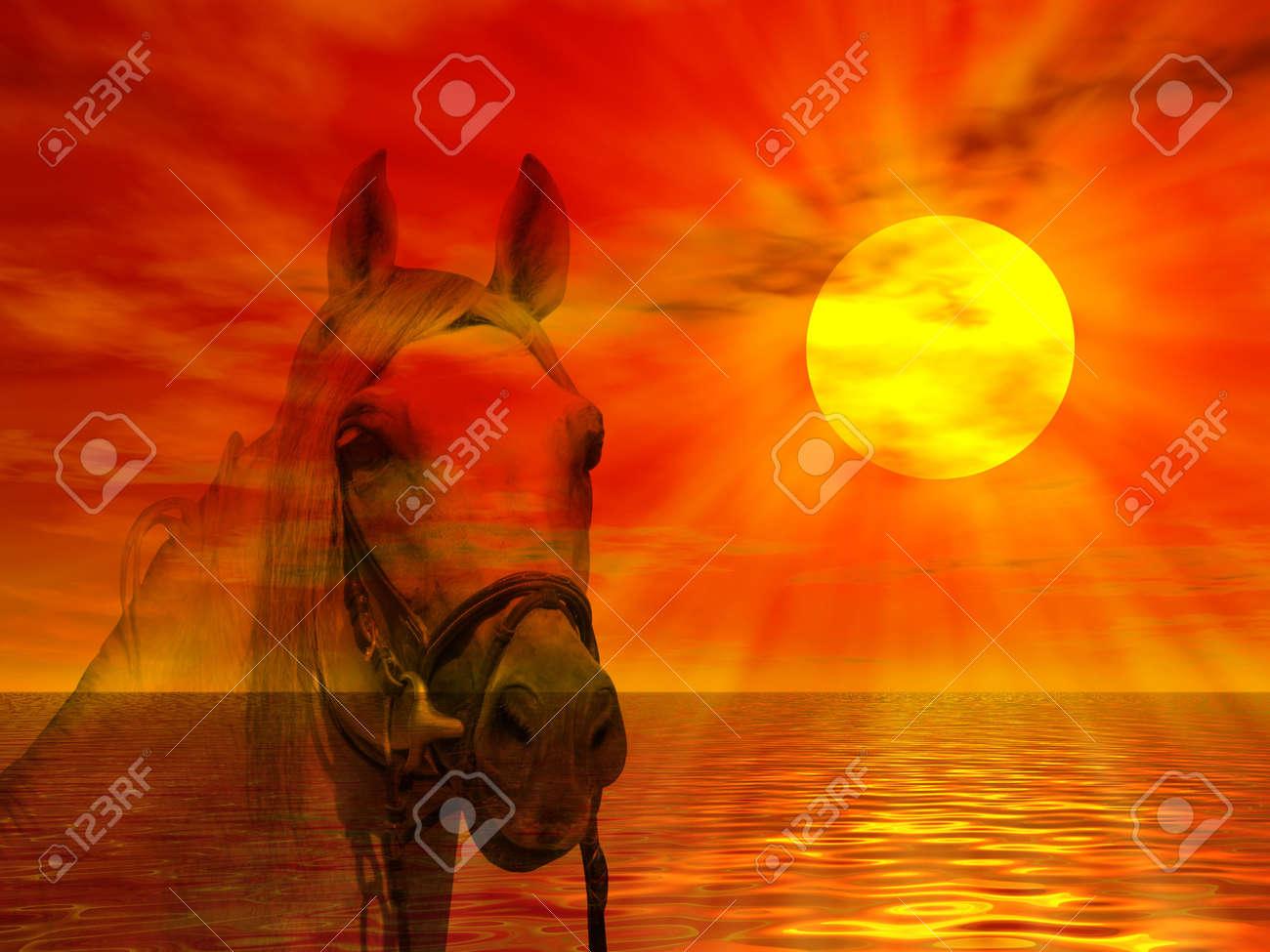 Horse portrait on a colorful sunset landscape Stock Photo - 2735820