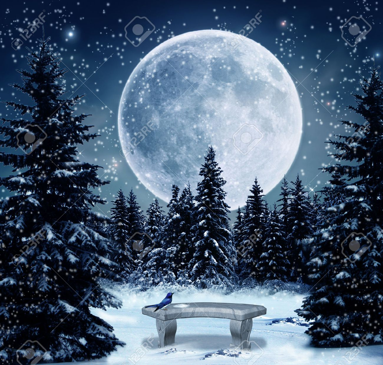 Winter night with a big full moon - 27613545