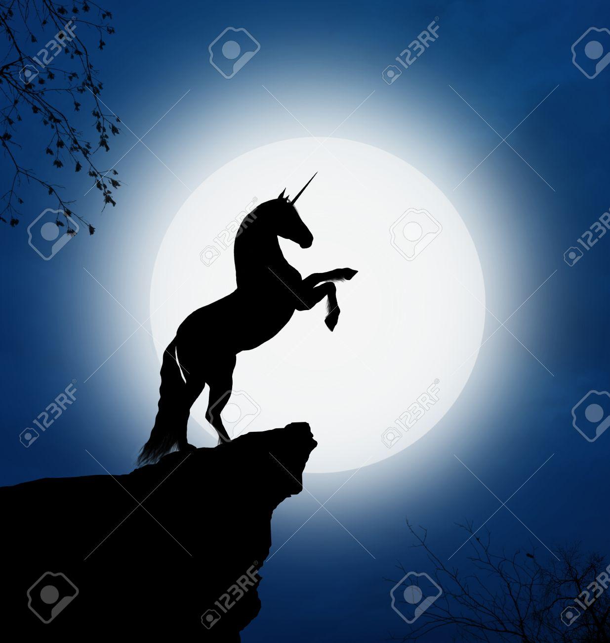 Fantastic unicorn in a full moon night - 29235334