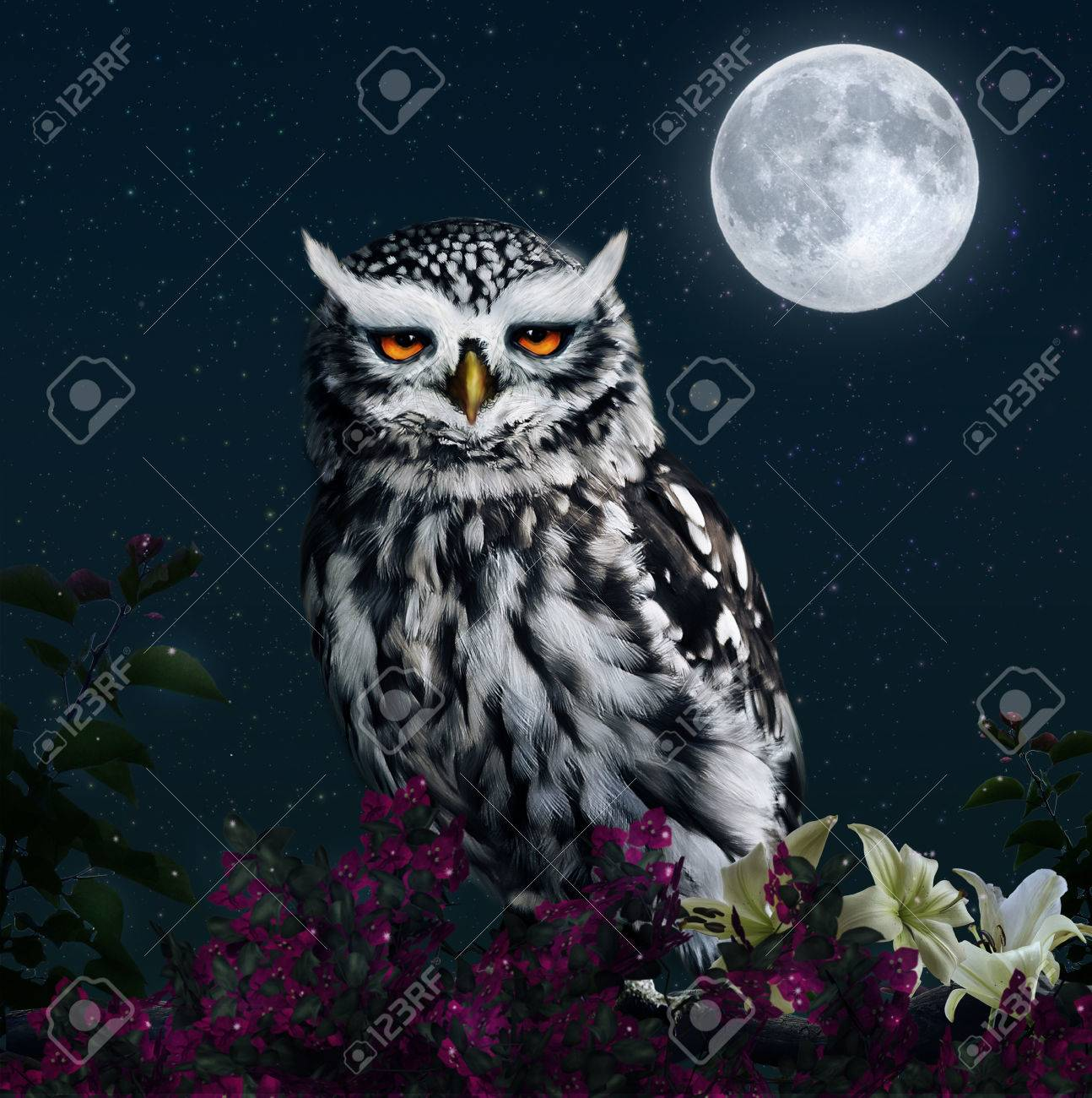 Photomanipulation of an owl at night with full moon - 30840768