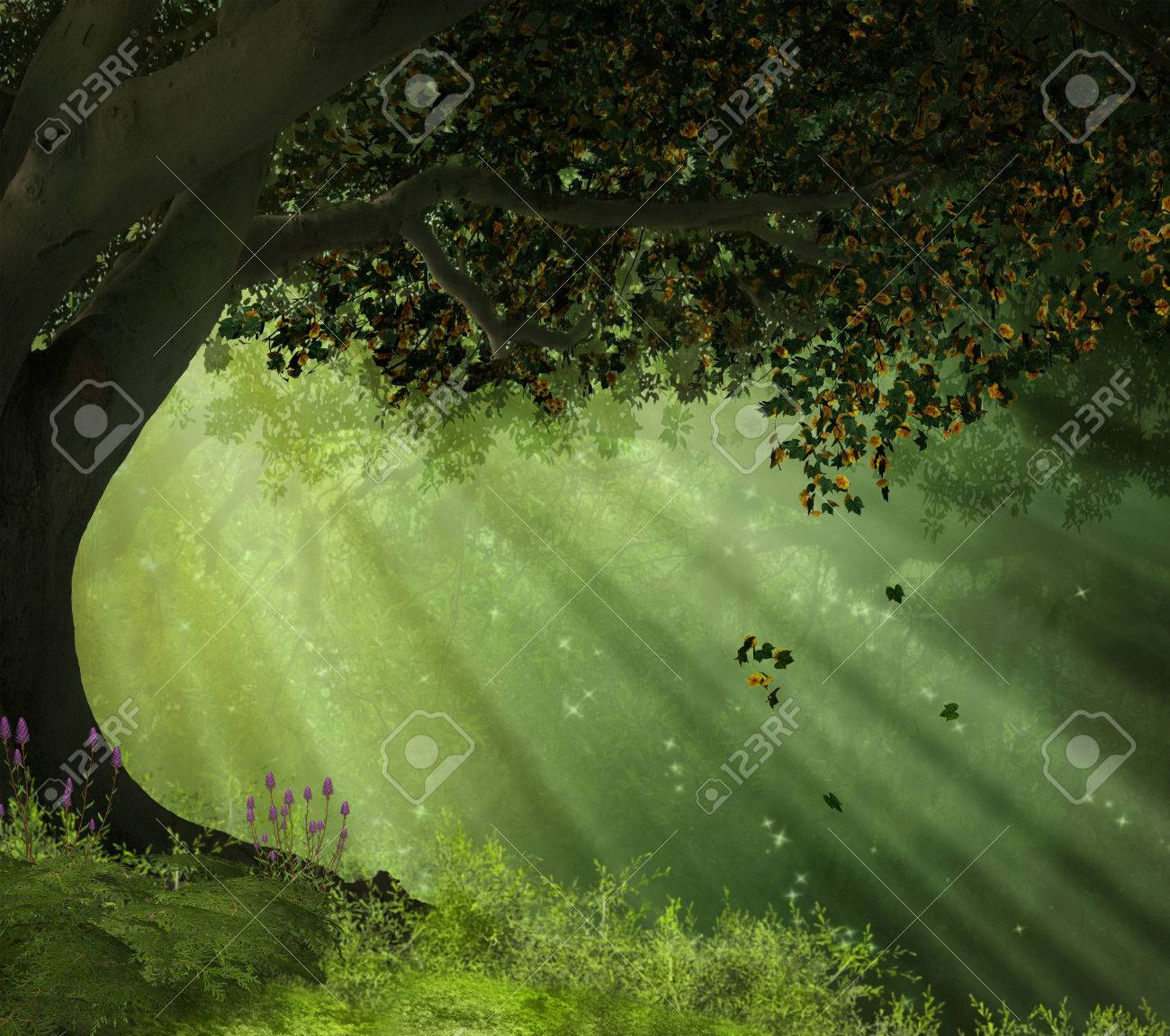 an old tree in a forest with rays of lights illuminating the scene - 32091597