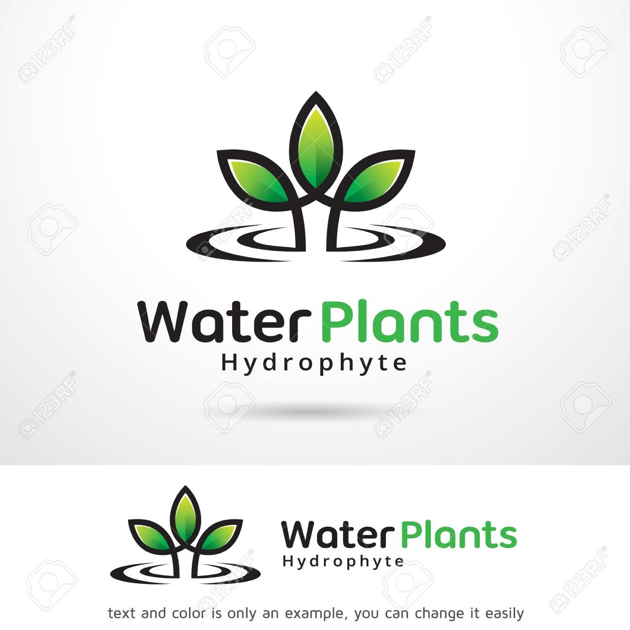 Diseño De Plantillas De Plantas De Agua Ilustraciones Vectoriales ...