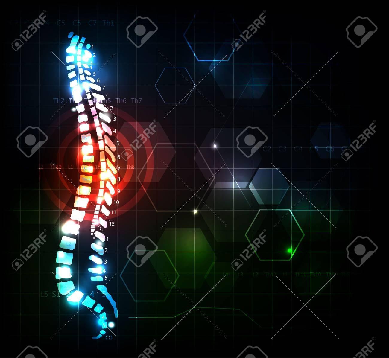 El Dolor De Espalda Colorido Columna Concepto De Ilustración Con ...