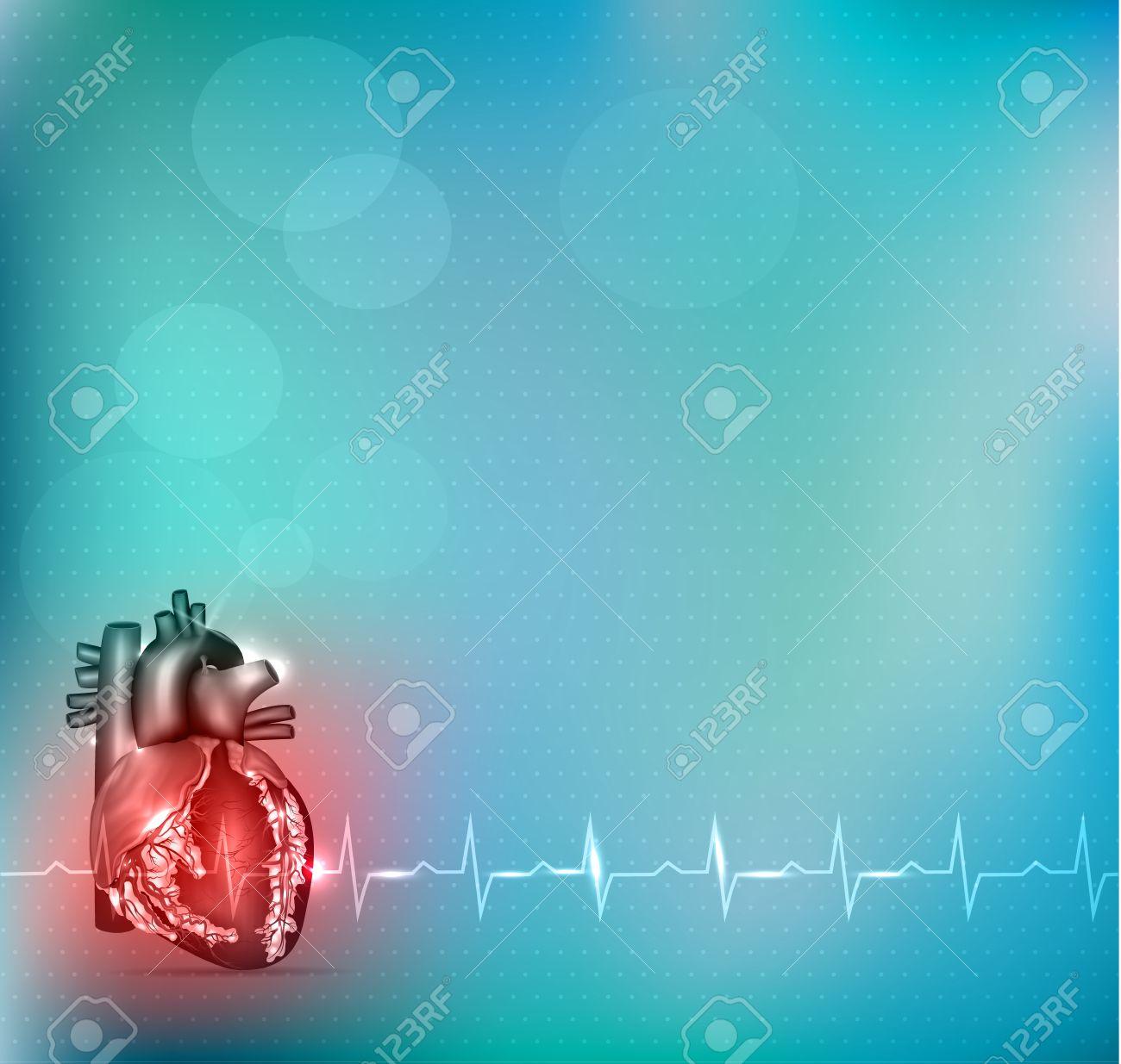 Fondo De Cardiología De Colores, La Anatomía Del Corazón Rojo Y ...