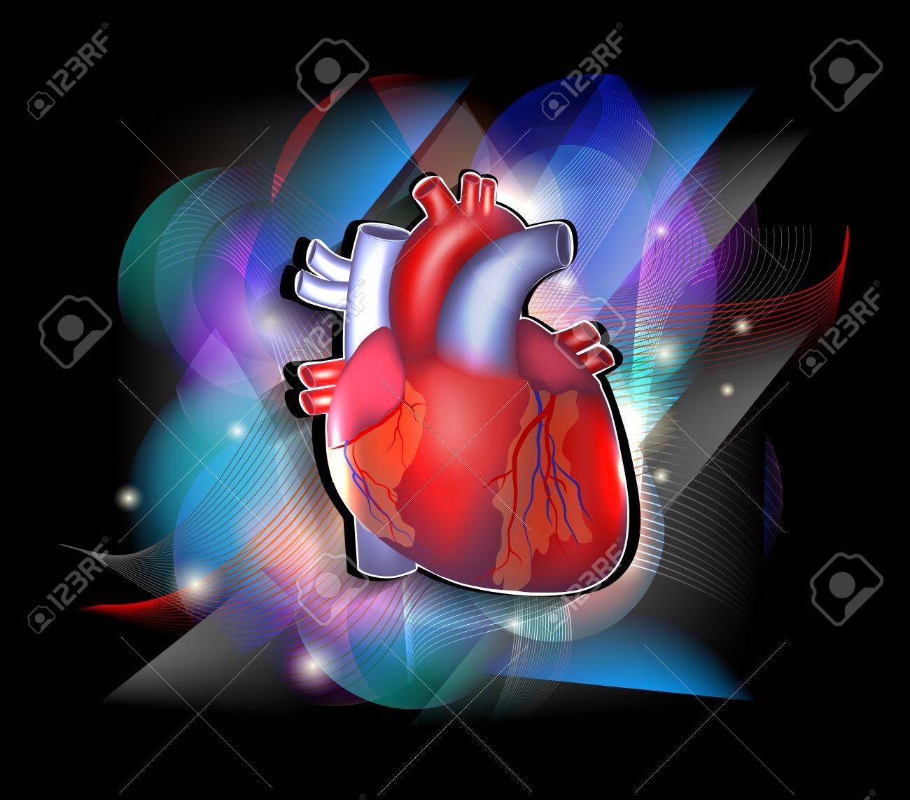 Bright Cardiology Poster, Human Heart Anatomy On A Vivid And ...