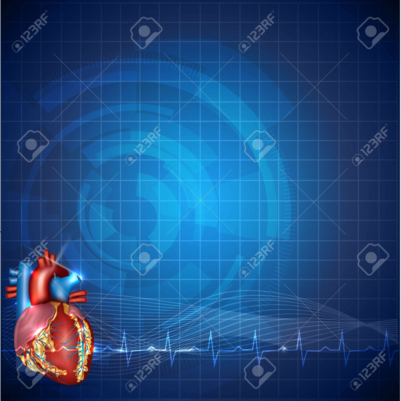 Cardiology Technology Background, Detailed Human Heart Anatomy ...