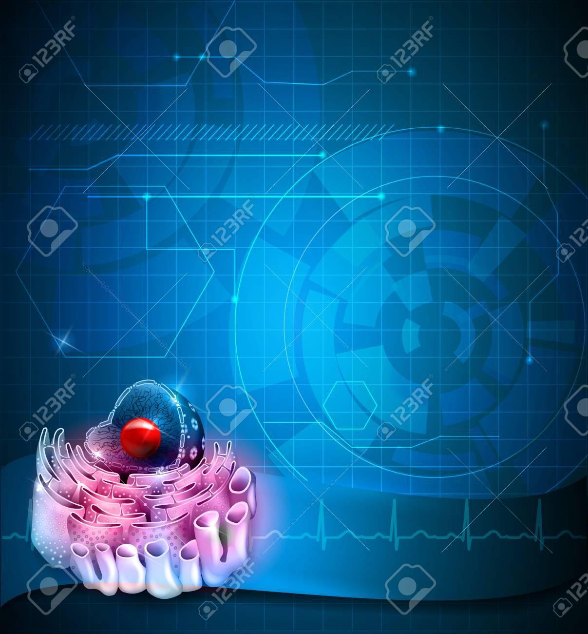 Núcleo Celular Fondo Azul Anatomía Detallada Fondo Azul ...