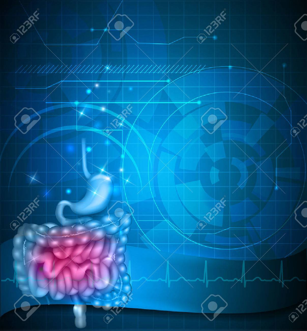 Gastrointestinal tract blue background. Stomach, small intestine and colon. Beautiful bright illustration. Stock Vector - 56849658