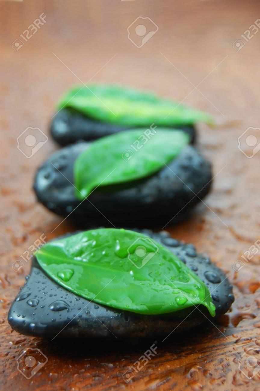 Zen Steine Und Blätter Mit Einem Wellness Oder Bad Konzept Standard Bild