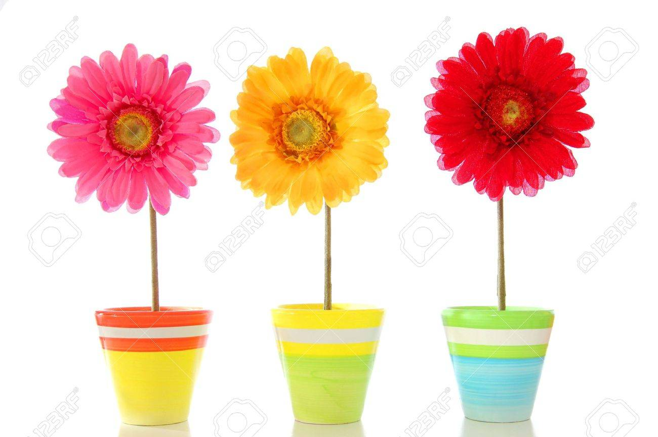 happy spring flowers isolated on white background Stock Photo - 5343928