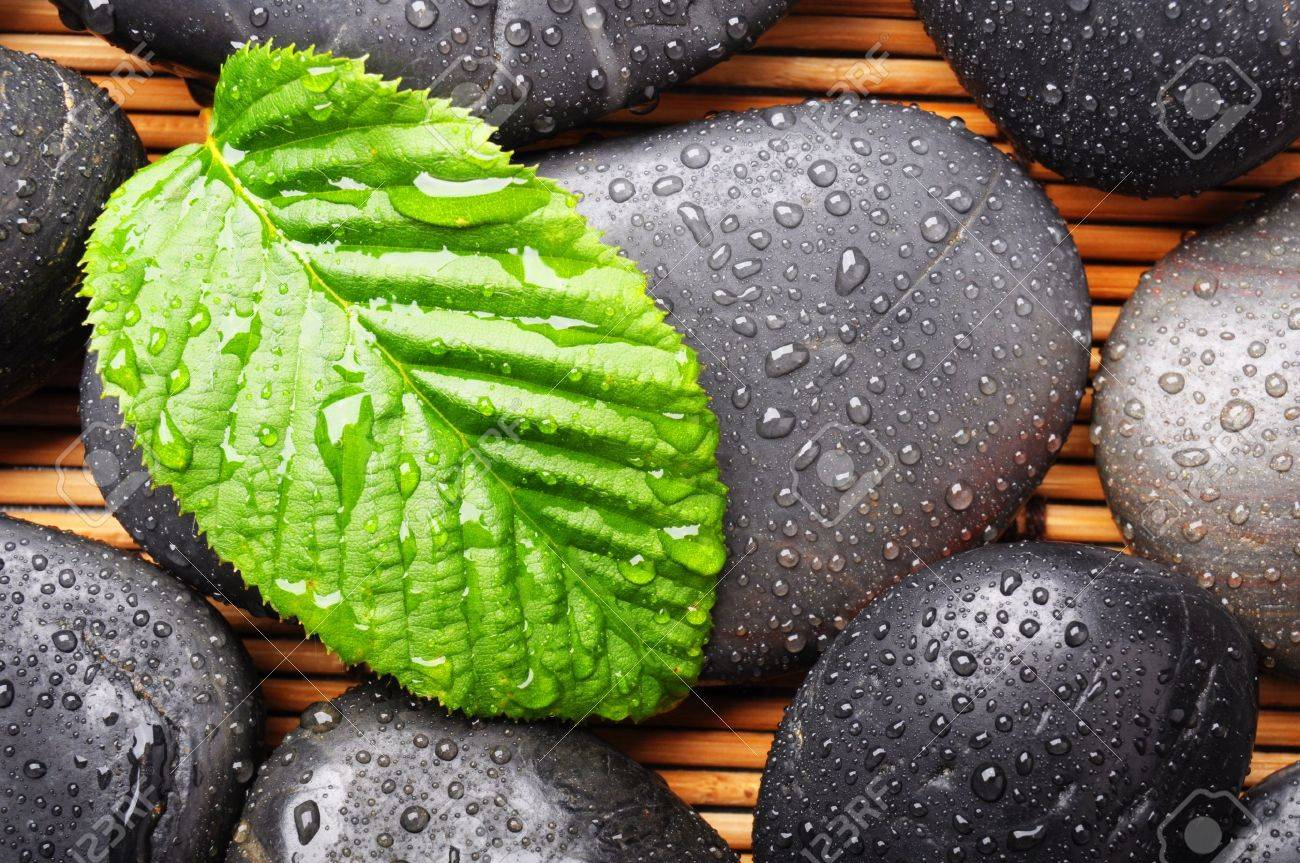 zen stone with green leaf or water drops showing spa or wellness concept Stock Photo - 7994578