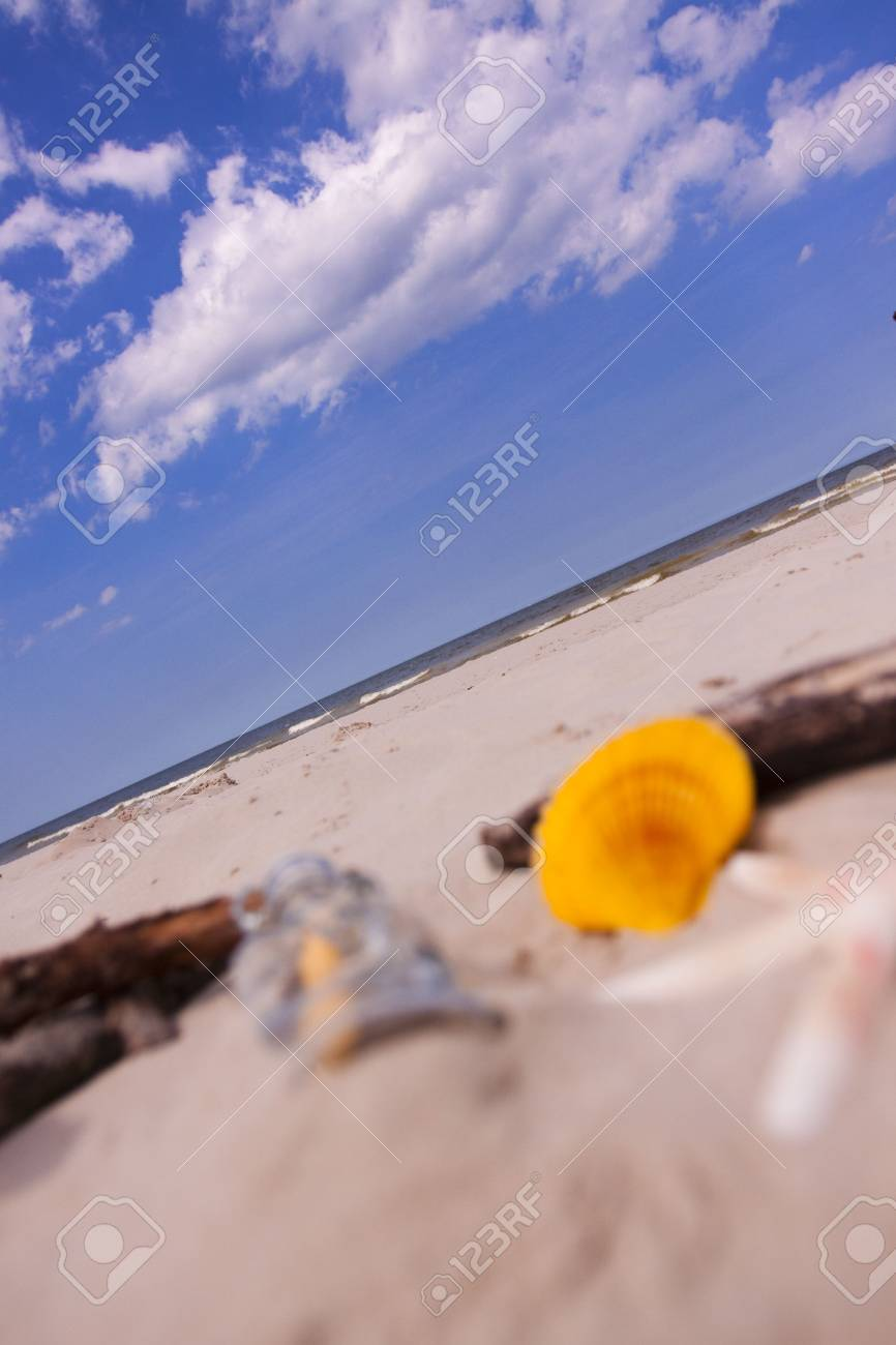 Beach compositions. Botlle brought by the water Stock Photo - 5356456