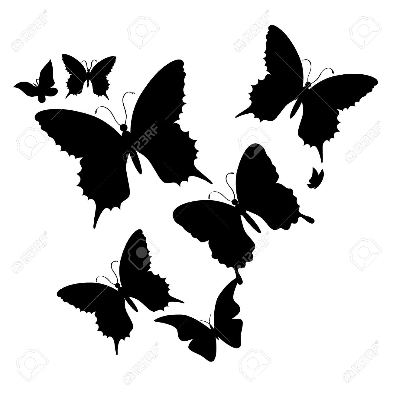 butterfly silhouette stock photos u0026 pictures royalty free