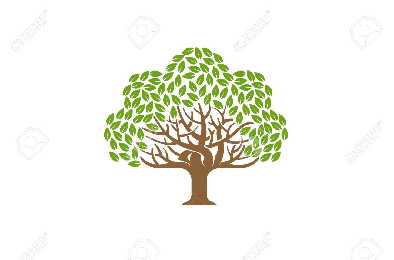 Green Creative Oak Tree Logo Design Symbol Illustration Stock Vector