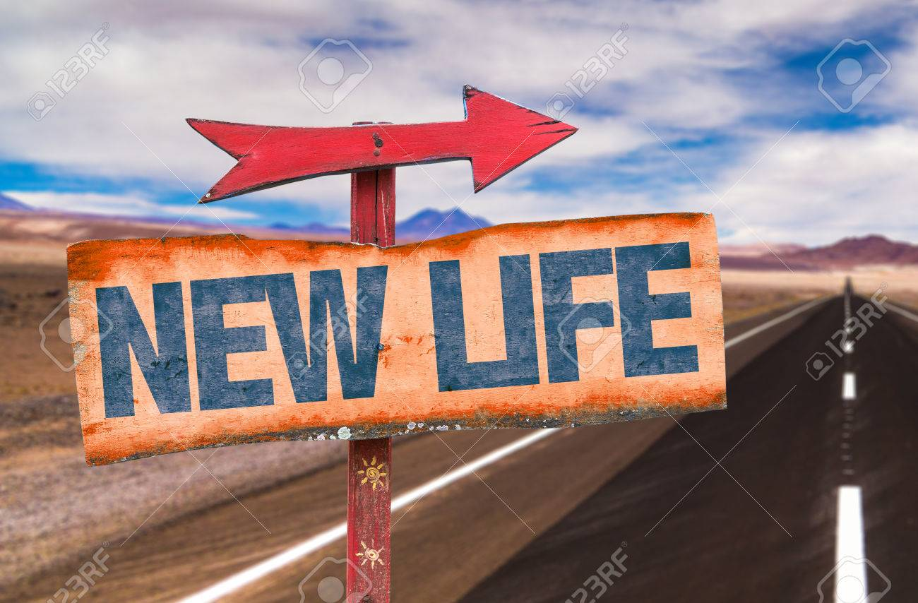 new life sign with arrow on a highway background stock photo