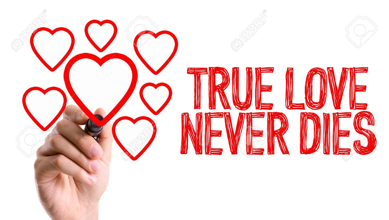 True Love Never Dies Written With A Marker Pen Stock Photo Picture