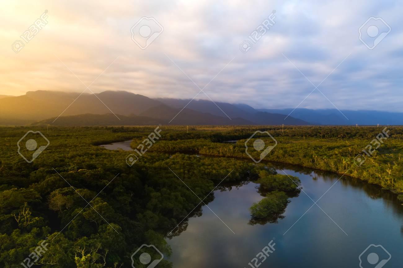 Amazon Rainforest in Brazil - 84929291