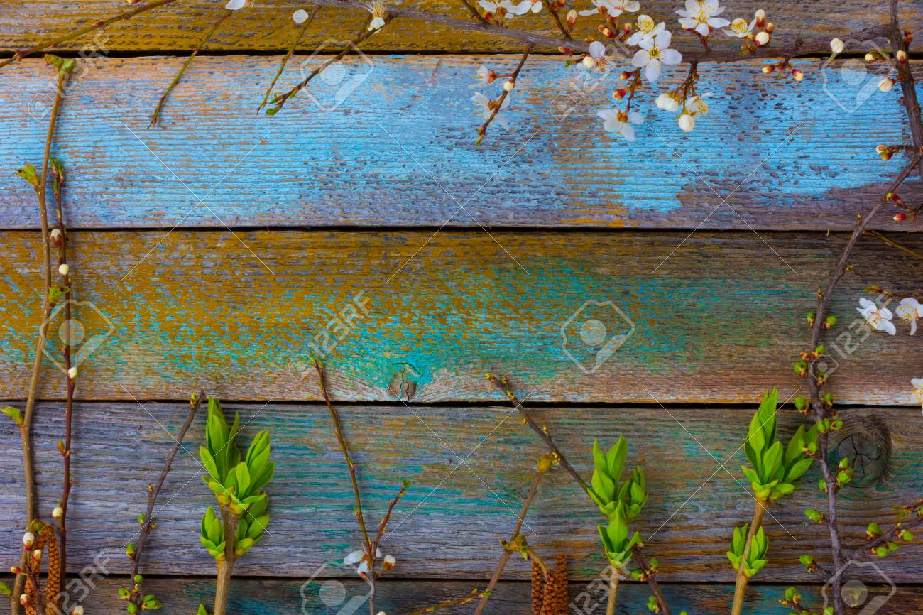 The Textural Background From Old Wooden Levels