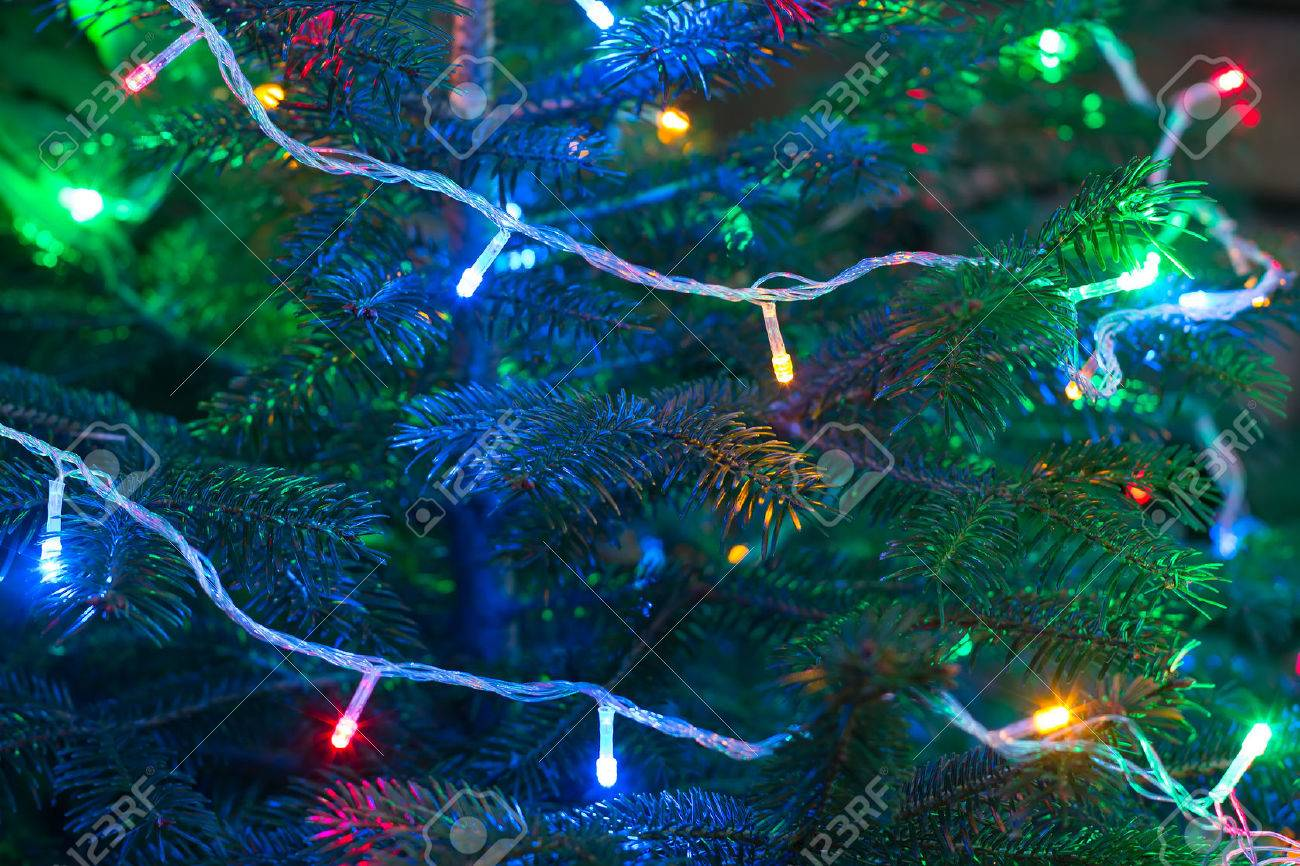 Christmas garland on the branches of a tree, selective focus - 45523570