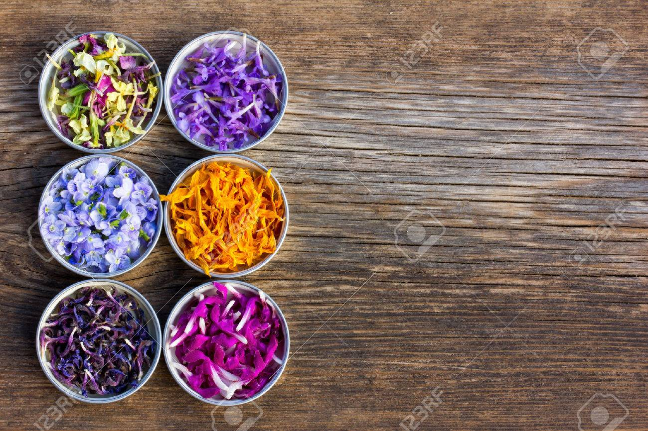 a set of fresh and colorful dried flower petals. aromatherapy, herbal tea, homeopathic medicine. Free space for text. Copy space - 54694921