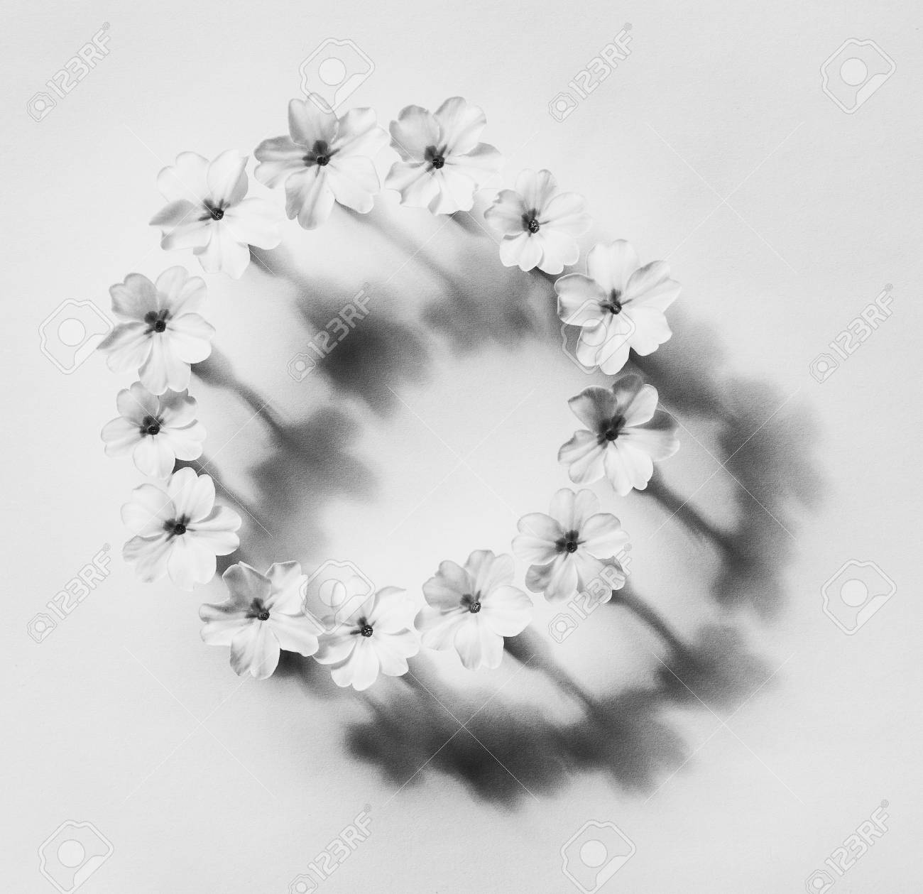 Floral Abstraction In The Style Of Minimalism, Round Frame Of ...