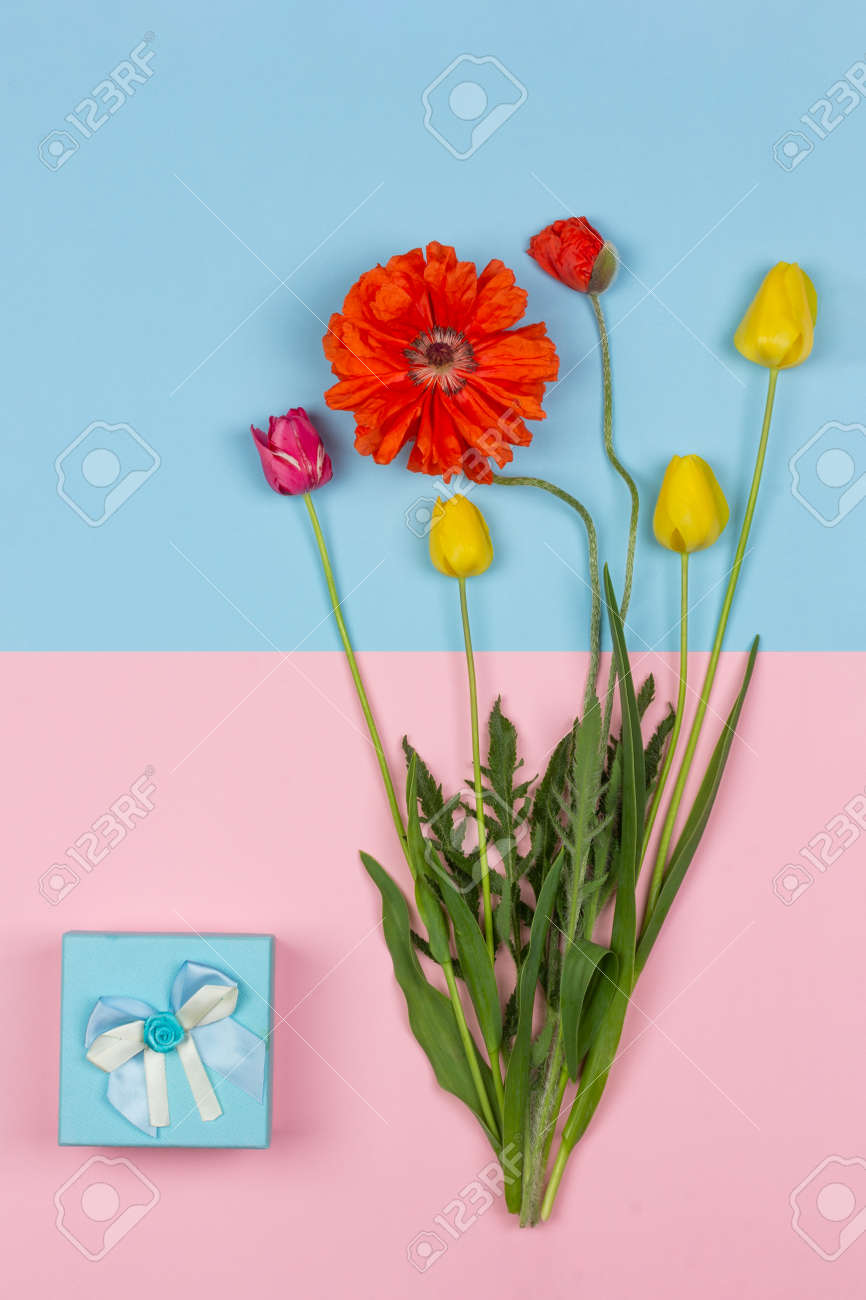 bouquet of flowers of yellow and red tulips and red poppy and a blue box with a gift on a pink and blue background top view - 165439615
