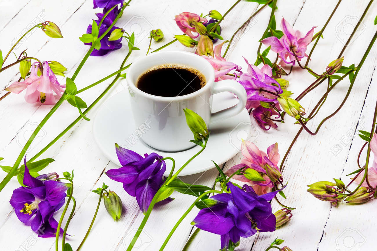 coffee cup on a white wooden table with pink and blue aquilegia flowers - 169308593