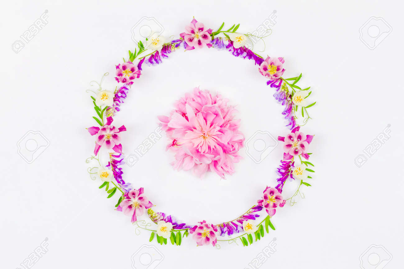 round frame of pink aquilegia flowers and green grass and a pink peony in the middle on a white background top view - 169308575