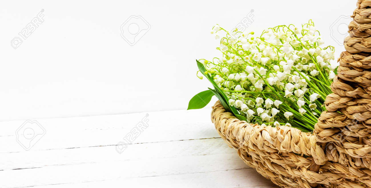 bouquet of white lily of the valley flowers in basket on white wooden background with copy space - 169308588
