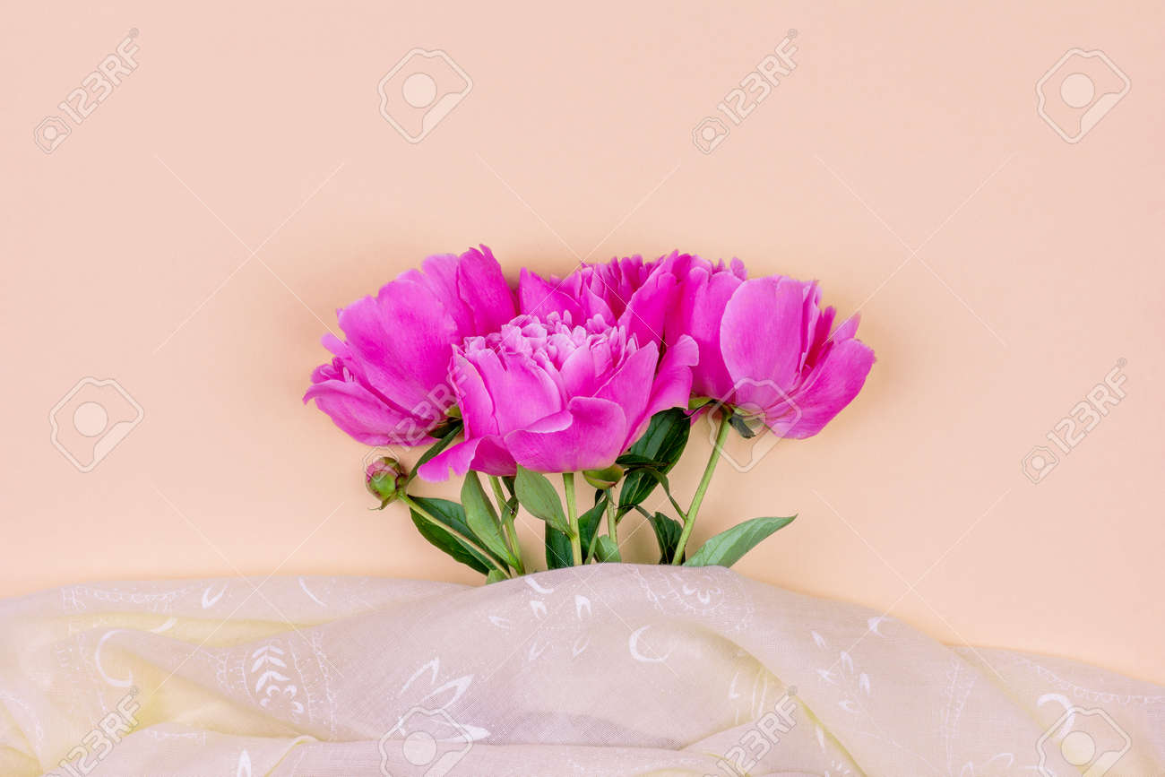 Bouquet of dark pink peony flowers close up and pink fabric on sand color background - 169308565