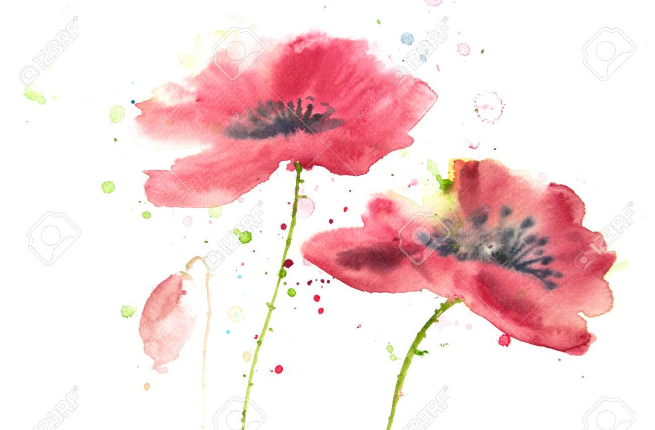 Beautiful red poppy flower watercolor painting stock photo picture beautiful red poppy flower watercolor painting stock photo 47850819 mightylinksfo