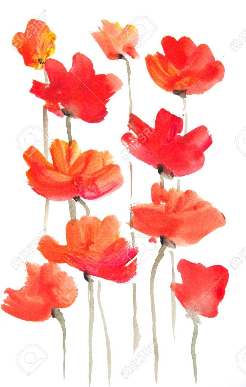 Red poppy flower on white watercolor painting in impressionism red poppy flower on white watercolor painting in impressionism style stock photo 63257460 mightylinksfo Gallery